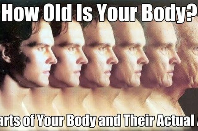 How Old Is Your Body?: 8 Parts of Your Body and Their Actual Age