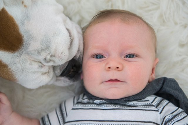 More Baby and Puppy Cuteness to Make You Swoon