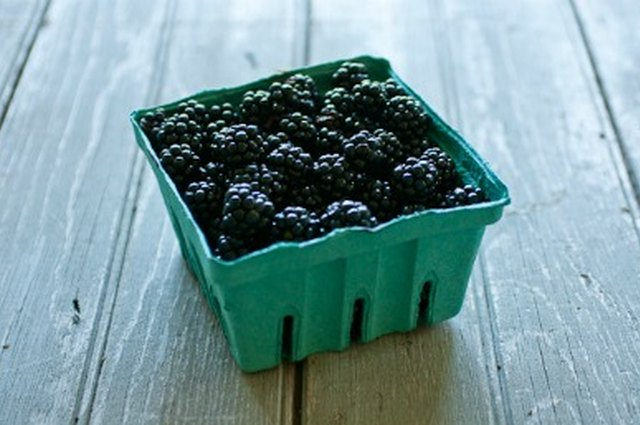 Growing and Cooking with Blackberries