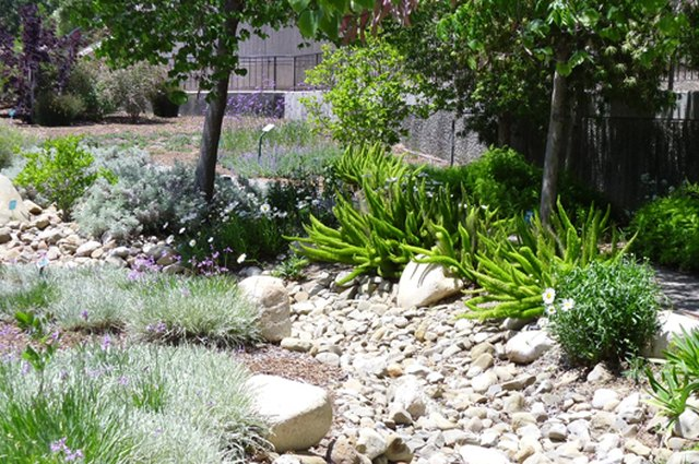 Design a Dry Riverbed Into Your Garden