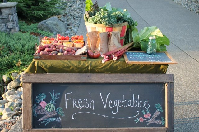 Tips for Selling Your Extra Garden Produce to Friends and Neighbors
