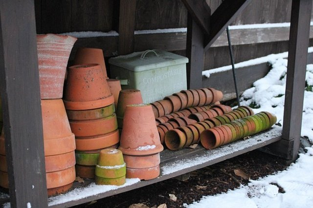 Winterizing Your Pots and Planters