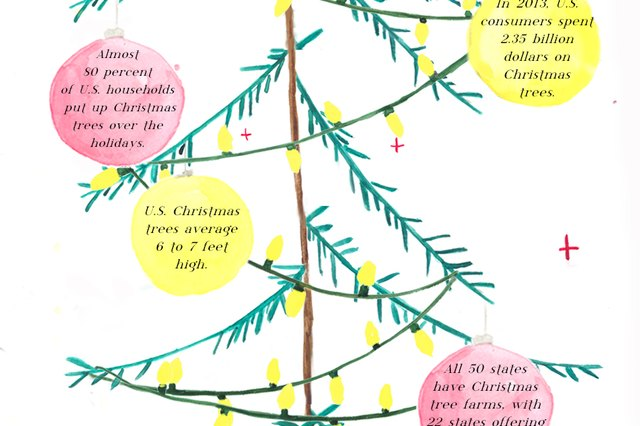 14 Things You Never Knew About Christmas Trees