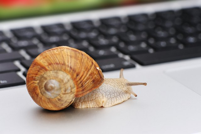 Your Internet May Soon Slow to a Snail's Pace. Don't Let It.