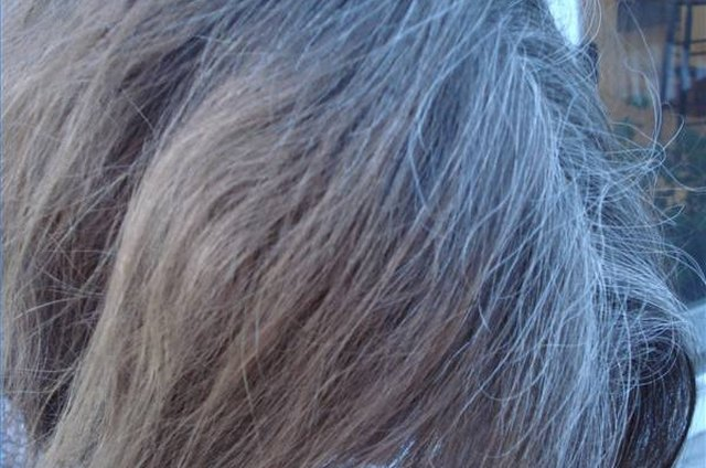 Growing Out Gray Hair Leaftv
