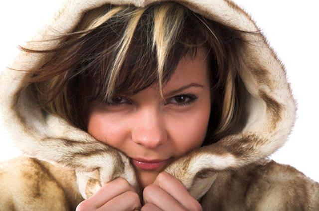 Coyote Fur Coat Womens Large Estate Furs >> How Do I Tell Furs Apart Leaftv