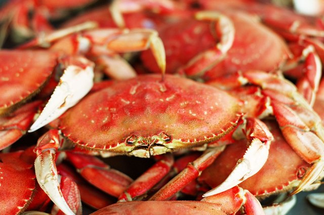 How to Store Dungeness Crab | LEAFtv