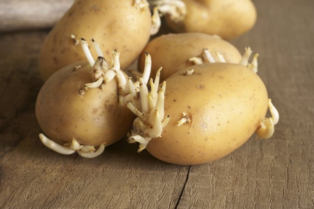 How to Know When Potatoes Go Bad | LEAFtv