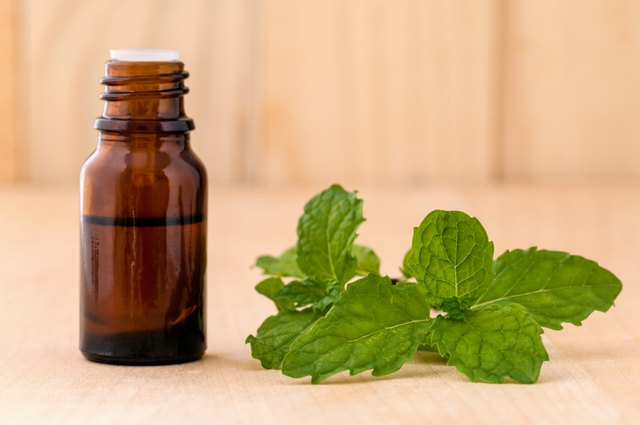 How to Use Peppermint Oil for the Scalp | LEAFtv