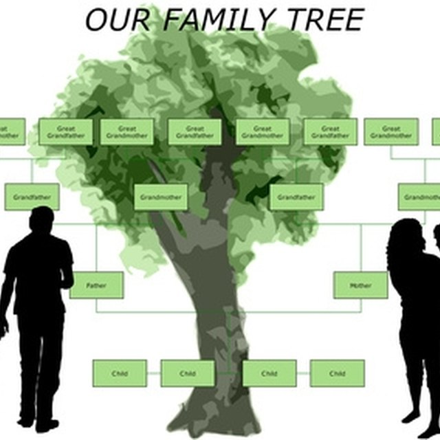 How to Make a Family Tree for Children
