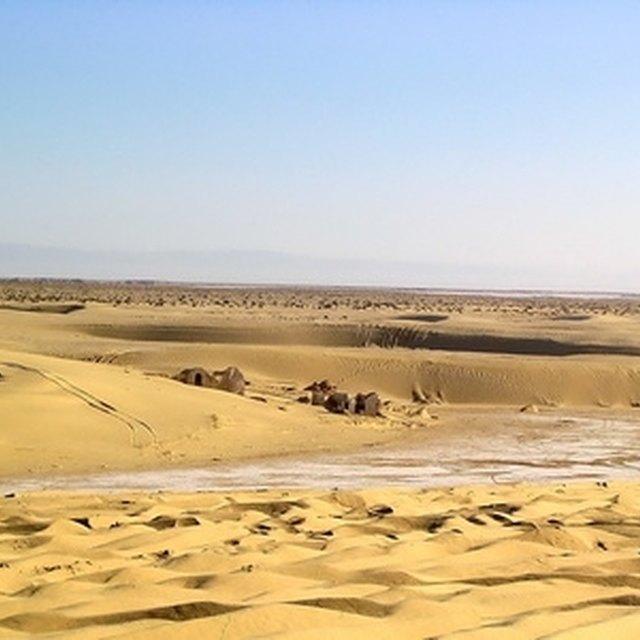 Desert School Projects
