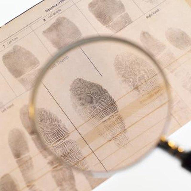 Schools That Teach Fingerprinting