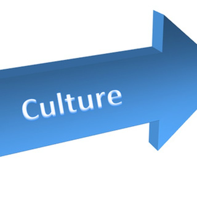 Two Major Functions of Organizational Culture