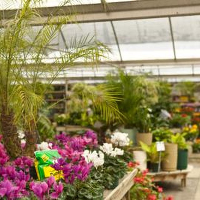 Topics in Botany for Research Papers