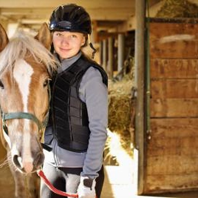 List of Top 10 Equine Colleges