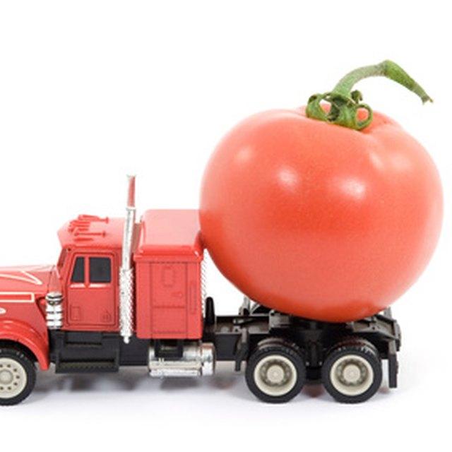 Top Food Service Companies