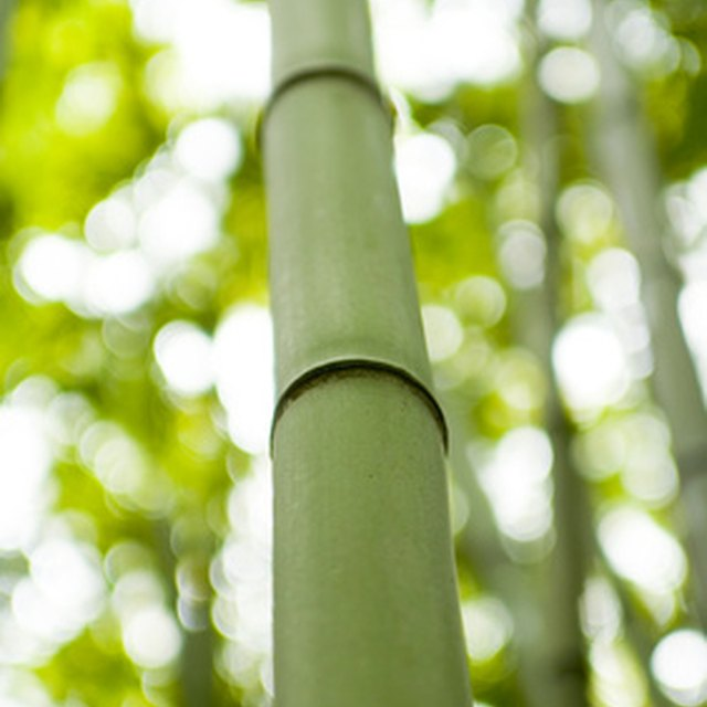 How To Make Bamboo Wood Floors Homesteady