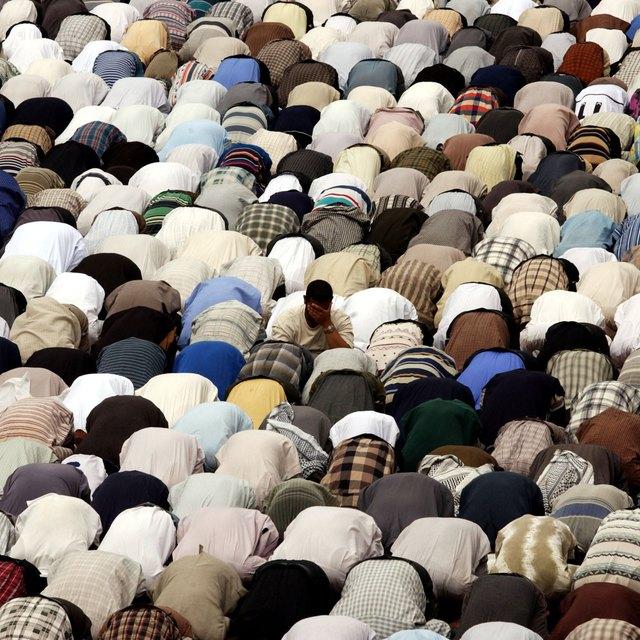 Shiite & Sunni Muslim Similarities