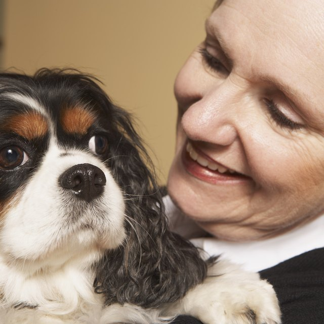 What is the Average Salary of an Animal Assisted Therapist?