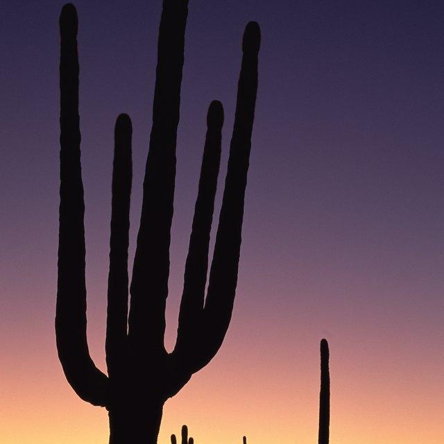 Does Arizona Tax Federal Retirements?