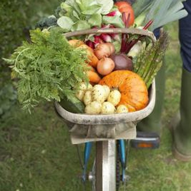 Who Accepts Fresh Vegetable Donations?