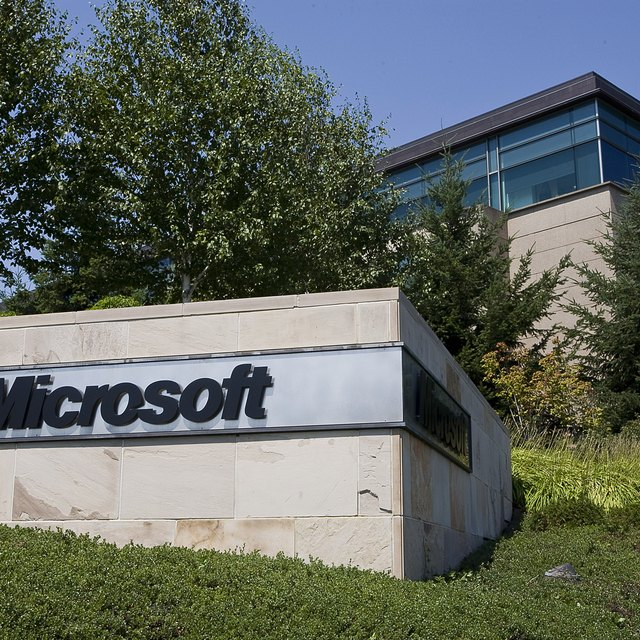 Microsoft's Organization and Structure