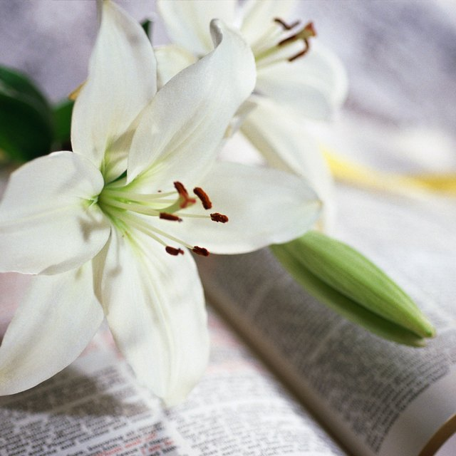 Easter Prayers for Children to Say