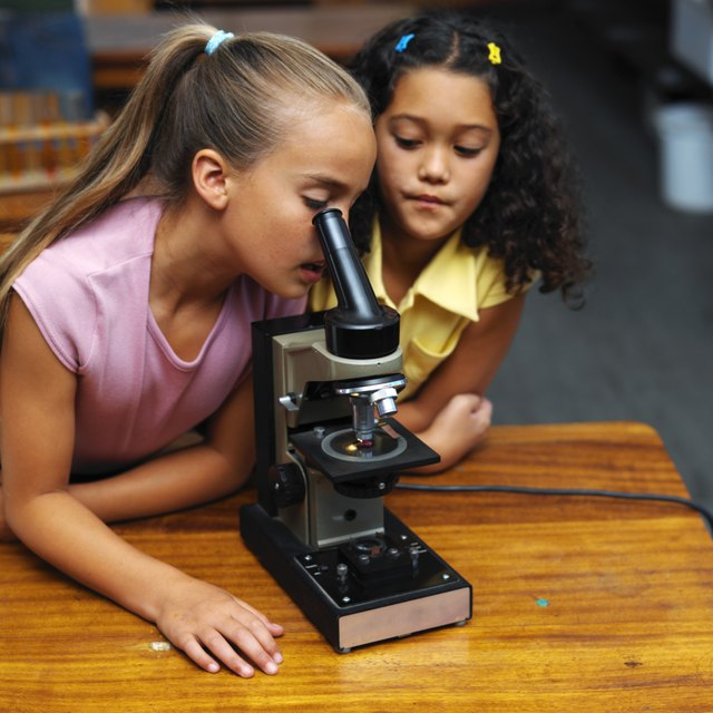 Science Inquiry Skills for Second Grade
