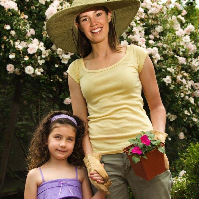 Preschool Lesson Plan on Seeds & Plants
