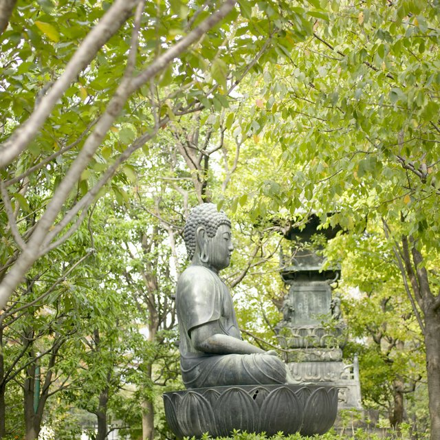 The Buddhist Concept of the Soul