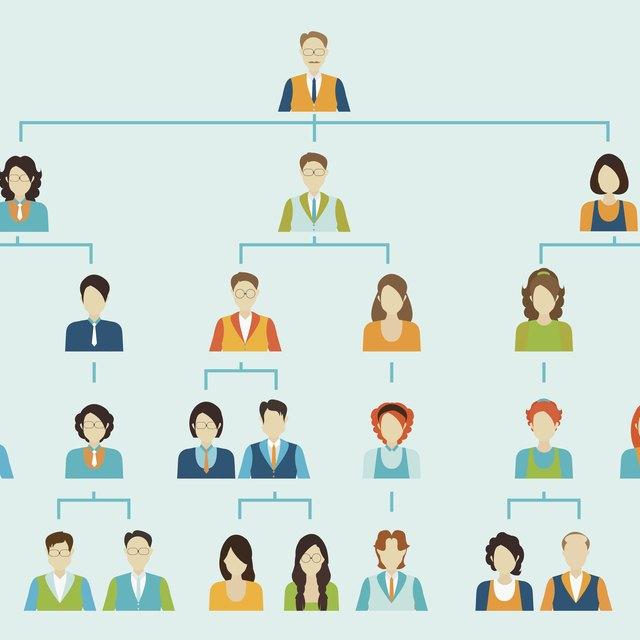 Advantages & Disadvantages of Divisional Organizational Structure