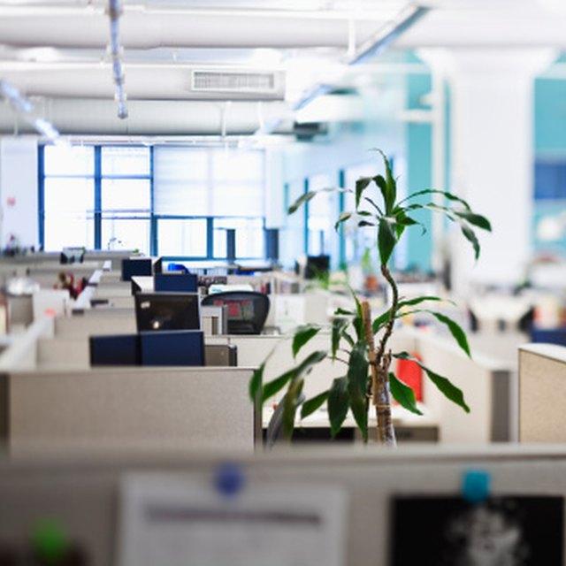 Office Housekeeping Duties