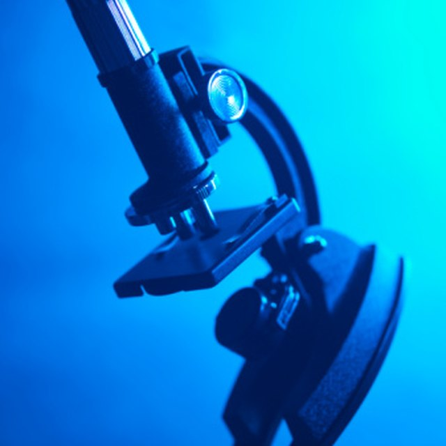 The Ways on How Microscopes Affect Society