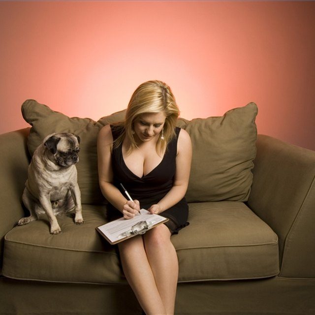 How to Write a Business Plan for a Doggy Daycare