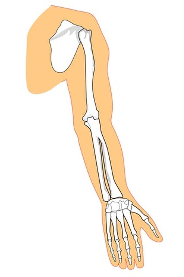 Arm Range of Motion Exercises