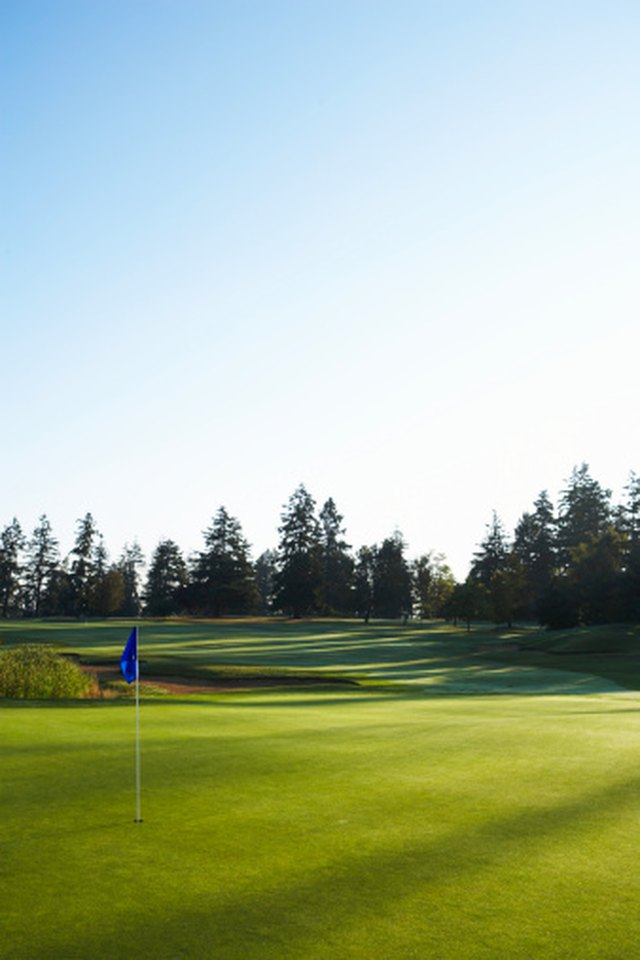 Rules of Golf and Boundary Fences