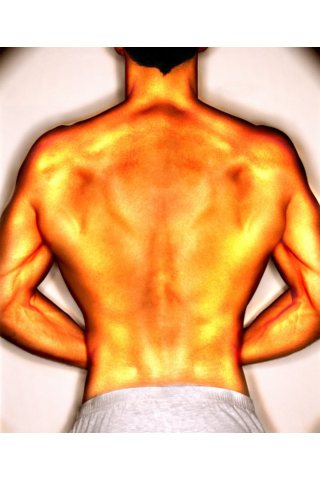 Exercises to Strengthen the Muscles of the T6 Thoracic Vertebra