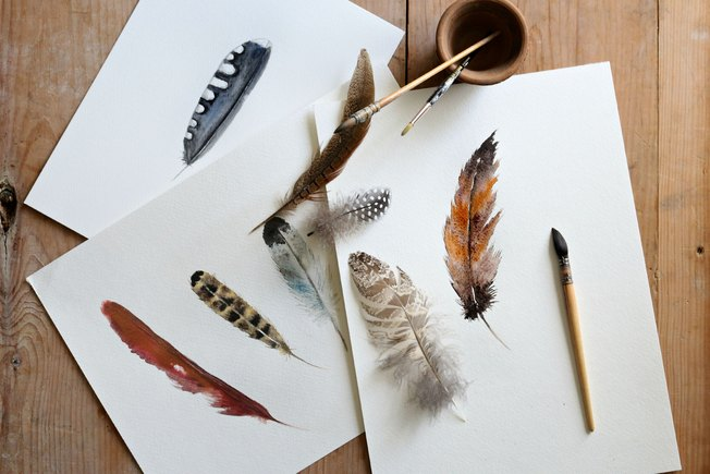 [Article Image] - Beginning Watercolor: Bird Feathers