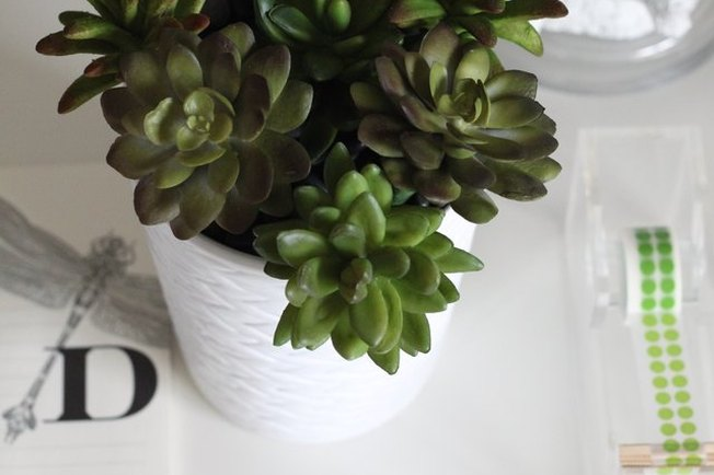 [Article Image] - Desk Decor: Faux Succulent Pen Planter