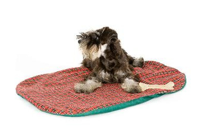 How to Make Homemade Dog Beds