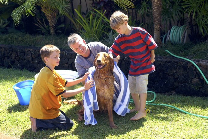 How to Bathe Dogs With Baking Soda
