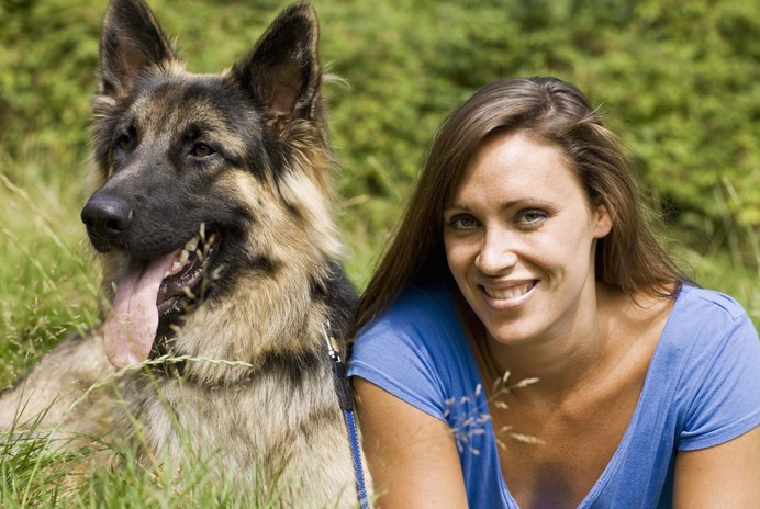 What to Do About a Timid German Shepherd