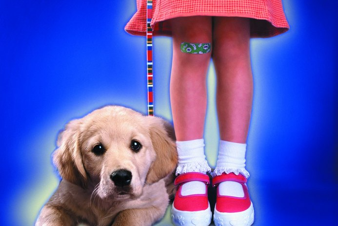 What Size of Leash Should You Get for Your Labrador Puppy?