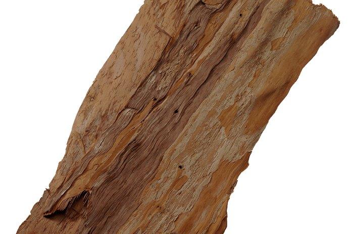 How to Attach Aquarium Moss to Driftwood