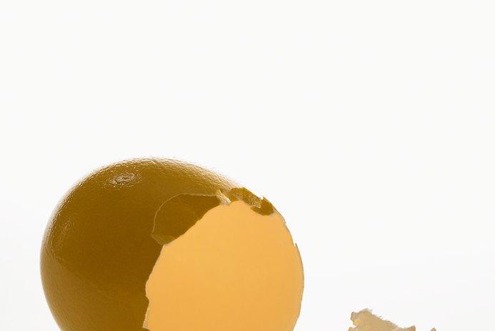 Are Eggshells Good for a Dog's Coat?