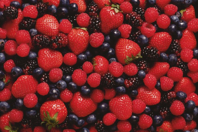 Fruits That Increase Brain Power