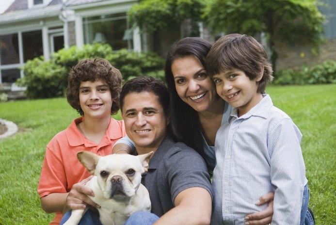 French Bulldogs & Small Children