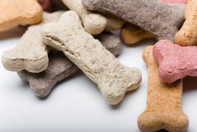 Dog Treat Recipe for Sensitive Tummies