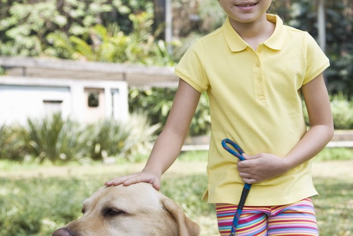How to Plan a Charity Dog Walk
