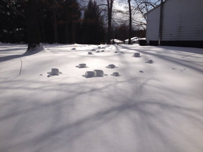 Snow Rollers in Idaho